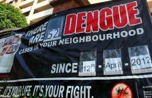 20120604.122521_tnp_dengue