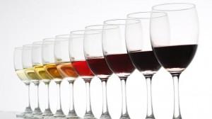 479425-taste-wines